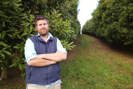 Dymocks Arapala Macadamia Farms