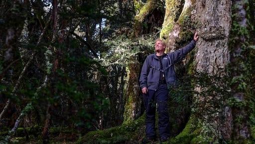 Tasmanian Land Conservancy (tlc)